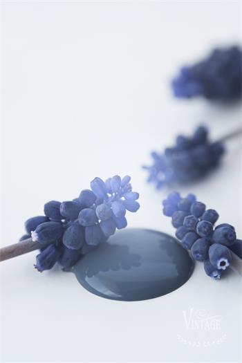 Vintage Paint Kreidefarbe 100 ml Royal Blue