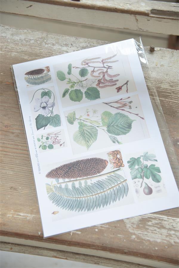 "Vintage Bastelpapier ""Blätter"""
